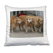 cushioncover